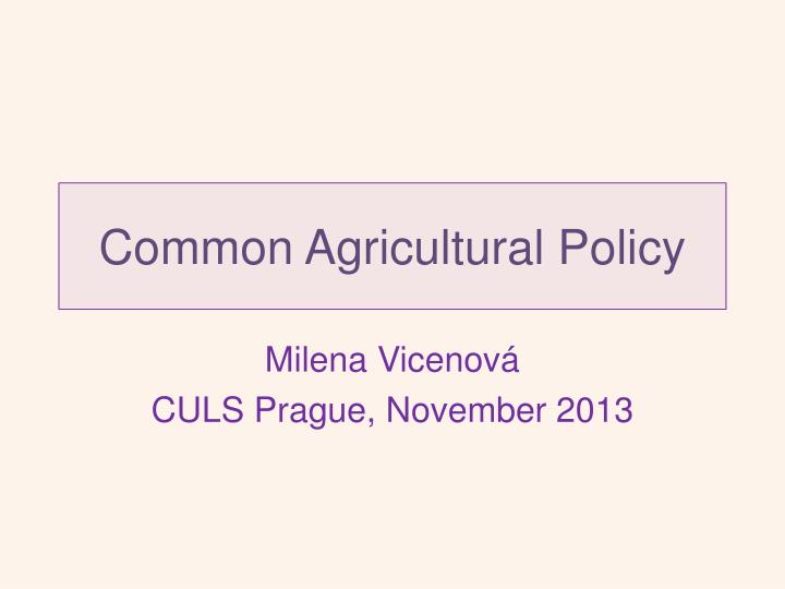 common agricultural policy n.