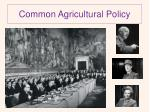 common agricultural policy3