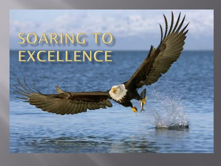 soaring to excellence n.