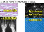 15 of 22 name the four types of tissue1