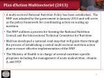 plan d action multisectoriel 2013
