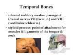 temporal bones2