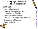 language delay in a toddler preschooler