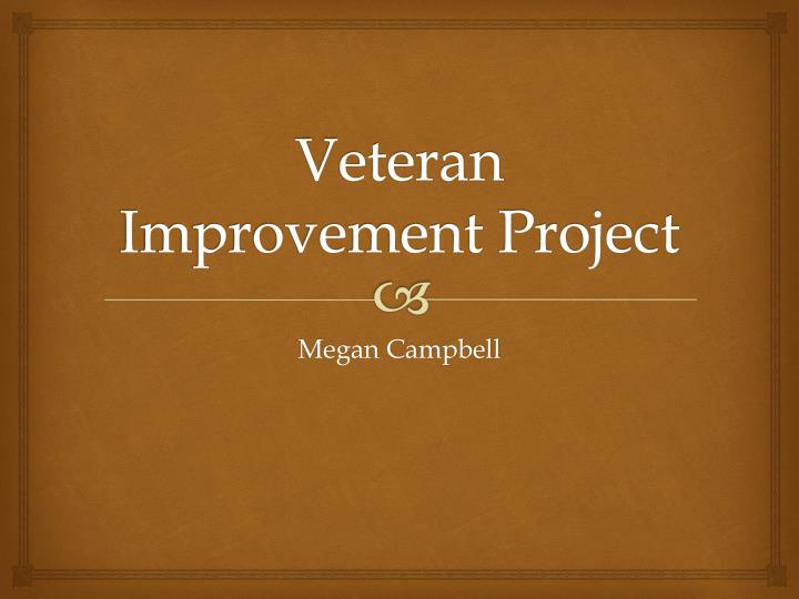 veteran improvement project n.
