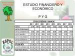 estudio financiero y econ mico p y g
