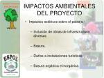 impactos ambientales del proyecto4