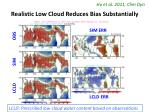 realistic low cloud reduces bias substantially