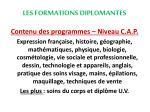 les formations diplomantes4
