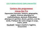 les formations diplomantes5