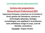 les formations diplomantes6