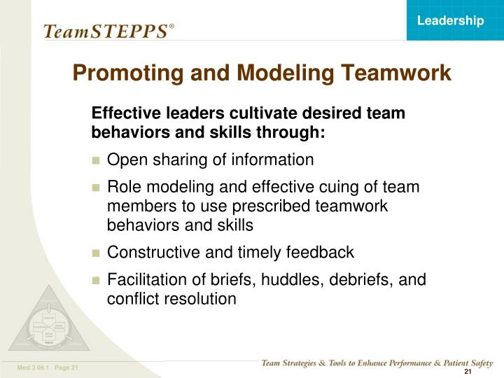 Promoting and Modeling Teamwork