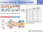 ancestry painting haplotype based