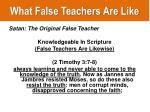 what false teachers are like1