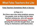 what false teachers are like10