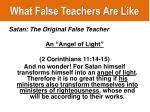 what false teachers are like5