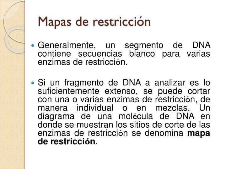 Mapas de restricción