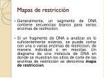 mapas de restricci n