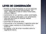 leyes de conservaci n
