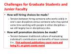 challenges for graduate students and junior faculty