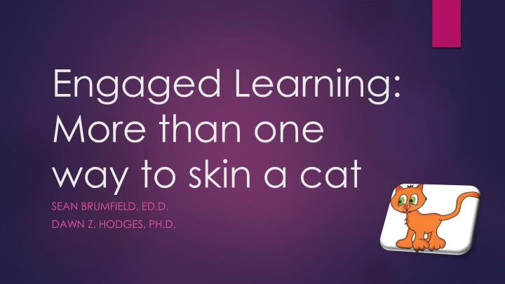 engaged learning more than one way to skin a cat n.