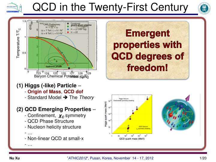 qcd in the twenty first century n.
