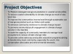 project o bjectives
