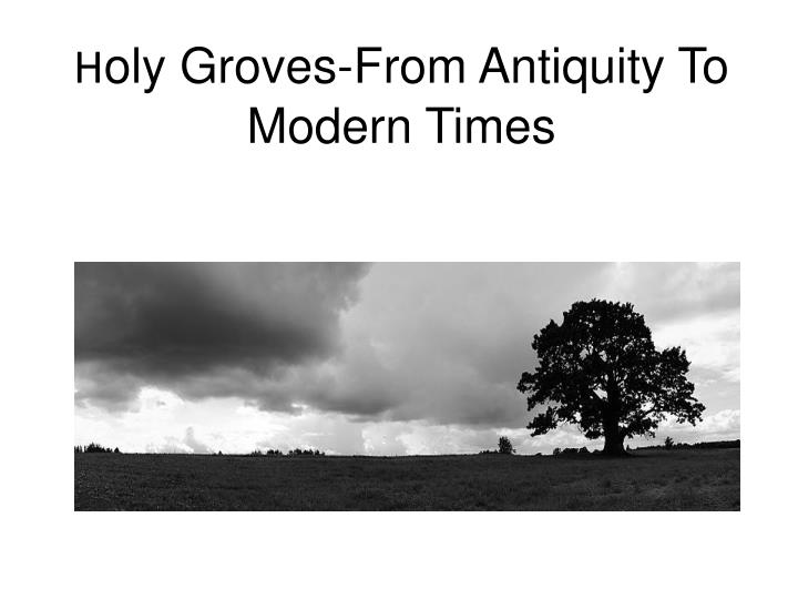 h oly groves from antiquity to modern times n.