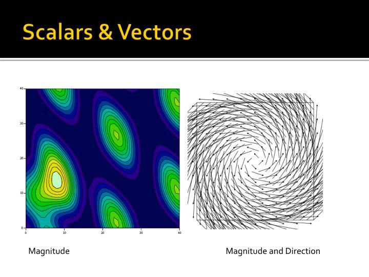 Scalars vectors