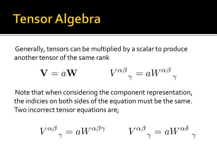Tensor Algebra