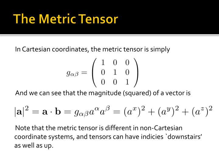 The Metric Tensor