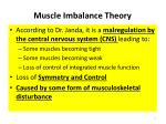 muscle imbalance theory