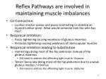 reflex pathways are involved in maintaining muscle imbalances