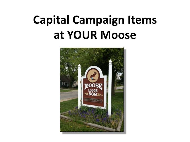 capital campaign items at your moose n.