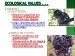 ecological values1
