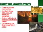 forest fire negative effects