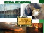 natural disturbances1