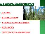 old growth characteristics