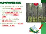old growth in nl