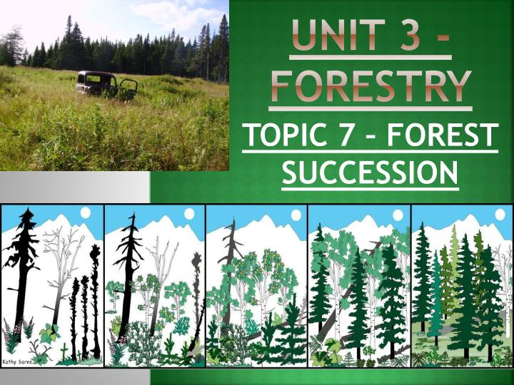 unit 3 forestry n.