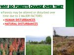 why do forests change over time
