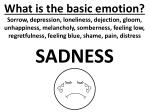 what is the basic emotion2