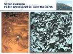 other evidence fossil graveyards all over the earth