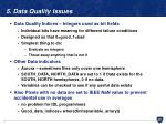 5 data quality issues