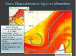 basic characteristics agulhas meanders