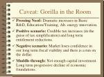 caveat gorilla in the room