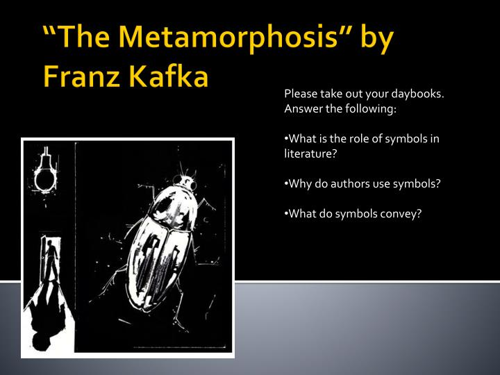 the metamorphosis by franz kafka The metamorphosis has 458,040 ratings and 11,501 reviews rebecca said: i once used my copy to kill a beetle thereby combining my two passions: irony a.