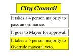 city council2