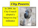 city powers1
