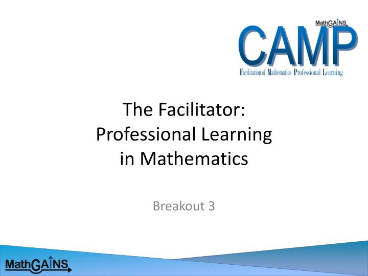 the facilitator professional learning in mathematics n.