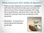 what covenants did i make at baptism1
